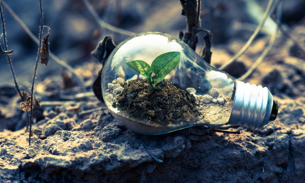 Applications of environmental biotechnology