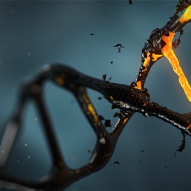 Recombination of DNA A drift of transformation in medical sector